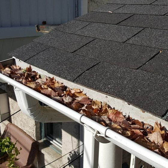 Gutters-Before-2